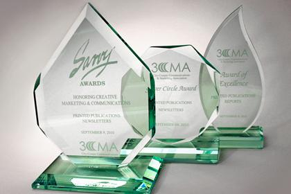 3CMA Savvy, Silver Circle and Award of Excellence